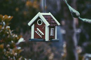 Une cabane à oiseaux